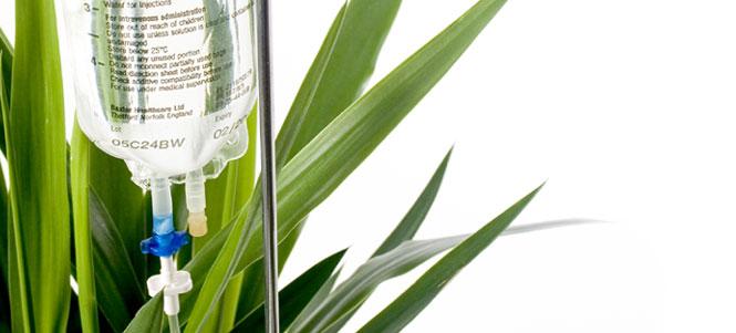 I.V. - Plant Pot by Vitamin, A Life Less Ordinary